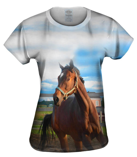 Eager Horse Womens Top