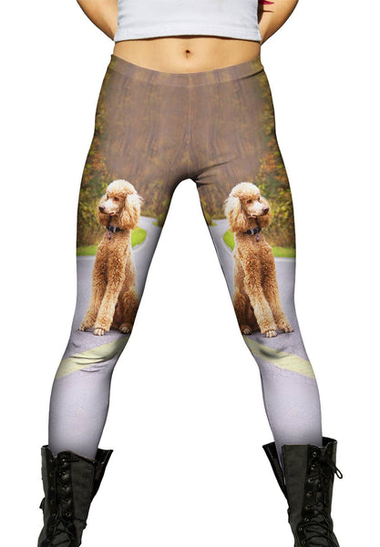 Poodle Going North Womens Leggings