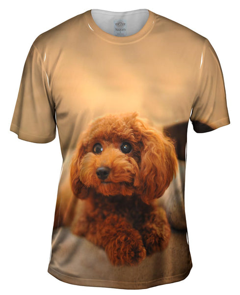 Cutest Poodle Ever Mens T-Shirt