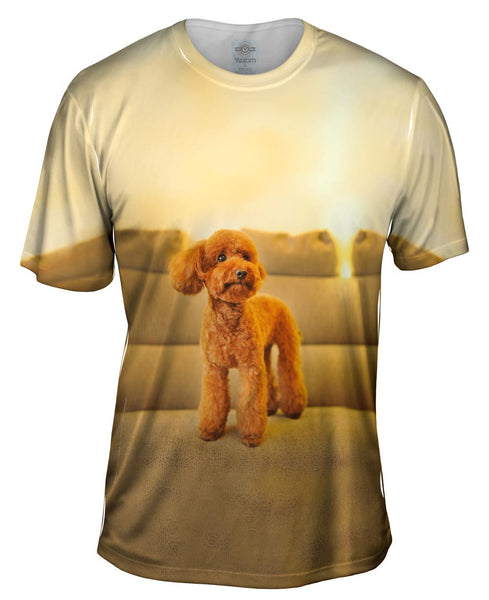 Poodle Couch King Mens T-Shirt