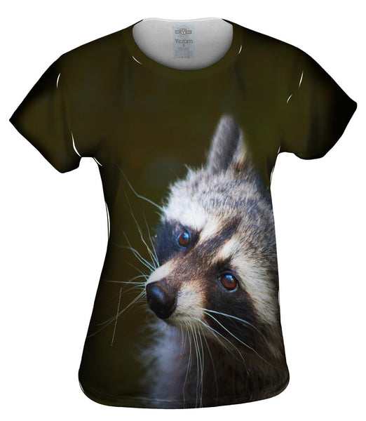 Curious Brown Raccoon Womens Top