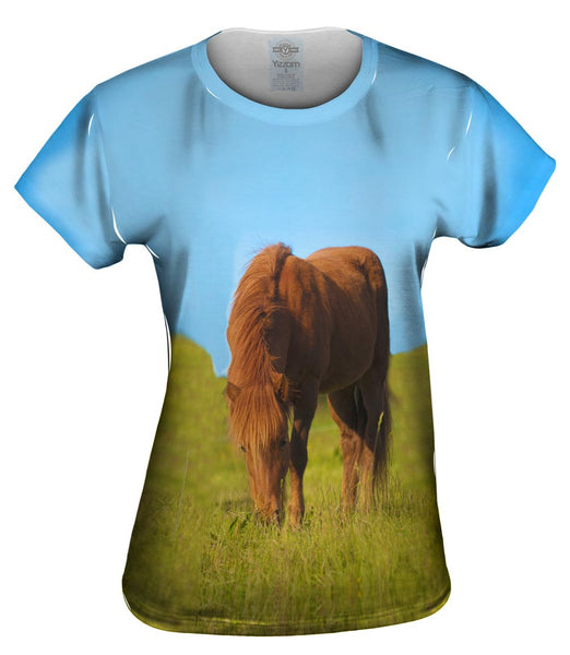 Grazing Wild Horse Womens Top