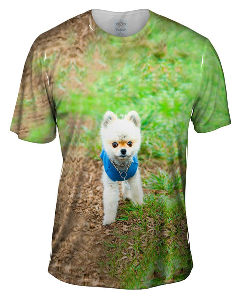 Lollipop Head Pomeranian Mens T-Shirt