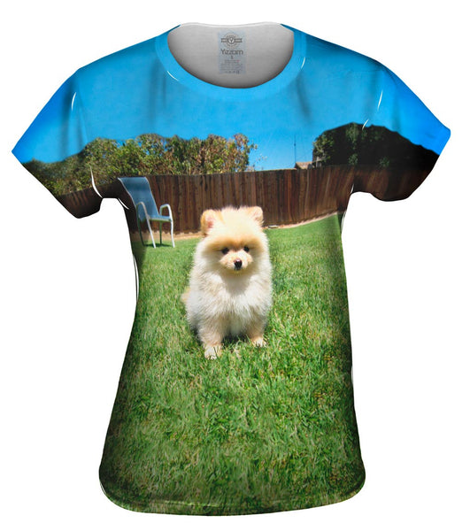 Perfect Backyard Pomeranian Womens Top