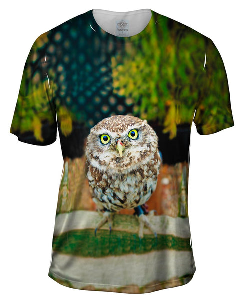Curious Owl Mens T-Shirt
