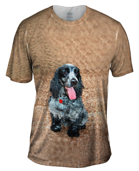 Salt And Pepper Cocker Spaniel Mens T-Shirt