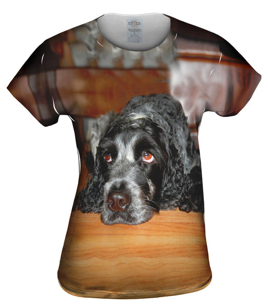 Quizzical Cocker Spaniel Womens Top