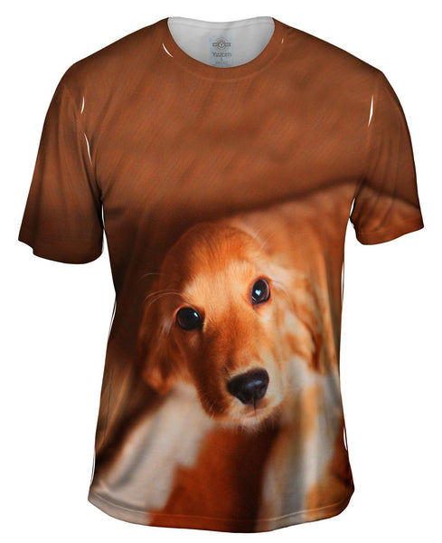 Kindly Golden Cocker Spaniel Mens T-Shirt