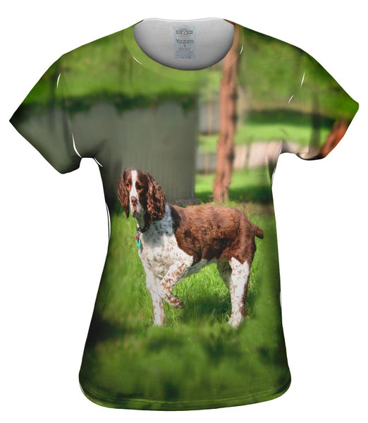 Cocker Spaniel Pointing Womens Top