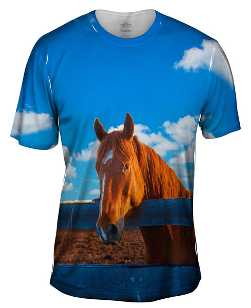 Fearless Stable Horse Mens T-Shirt