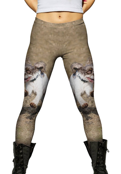 Cocker Spaniel Race Womens Leggings
