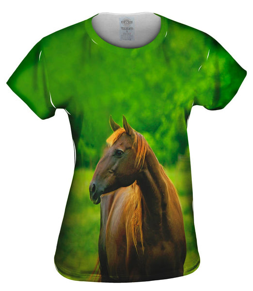 Decisive Horse Womens Top