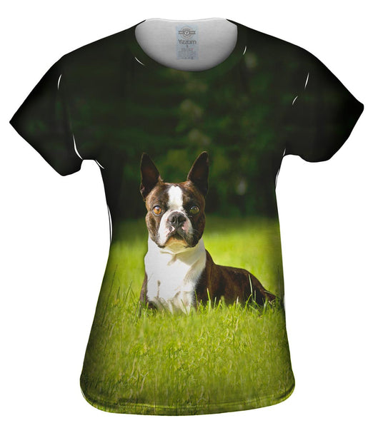 Giddy Boston Terrier Womens Top