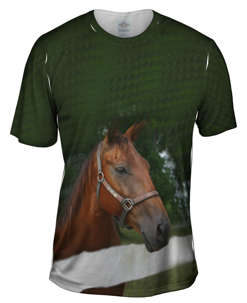All Knowing Horse Mens T-Shirt