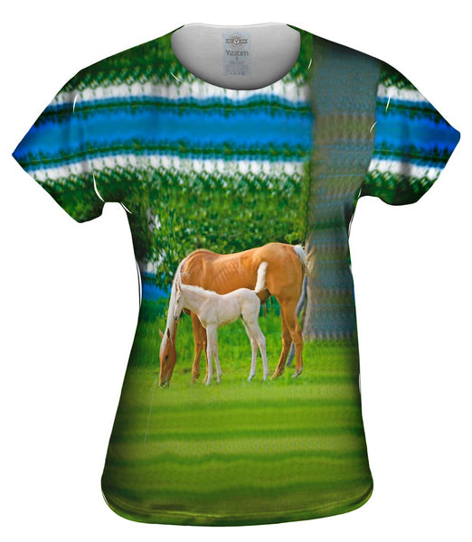 Misty Horses Grazing Womens Top