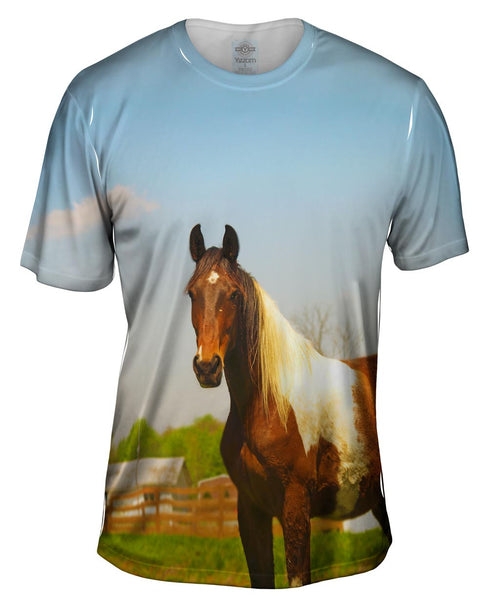 Mountainous Brown White Horse Mens T-Shirt