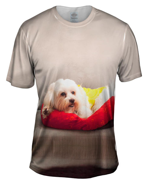 Maltese On Doggy Bed Mens T-Shirt