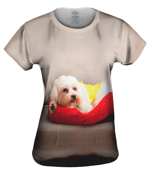 Maltese On Doggy Bed Womens Top
