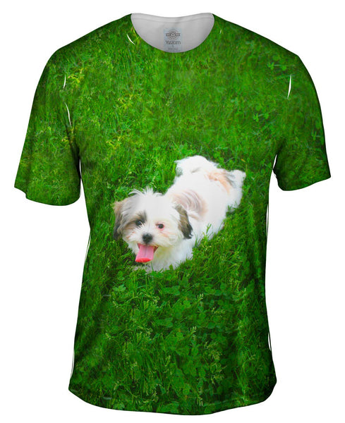 Maltese Rolling Around Mens T-Shirt
