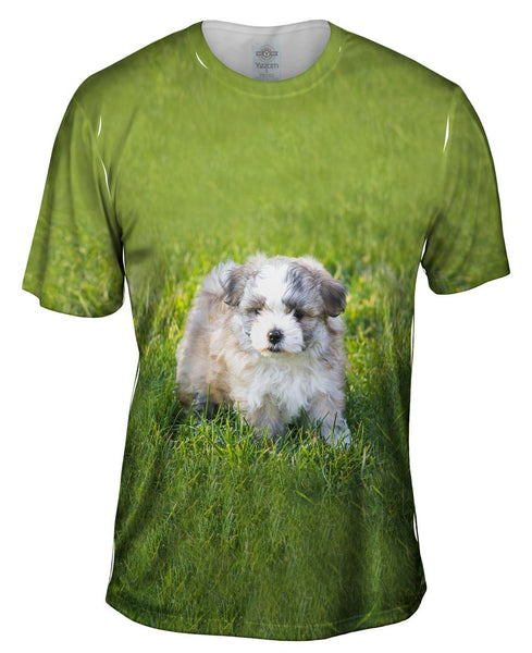 Giddy Salt And Pepper Maltese Mens T-Shirt