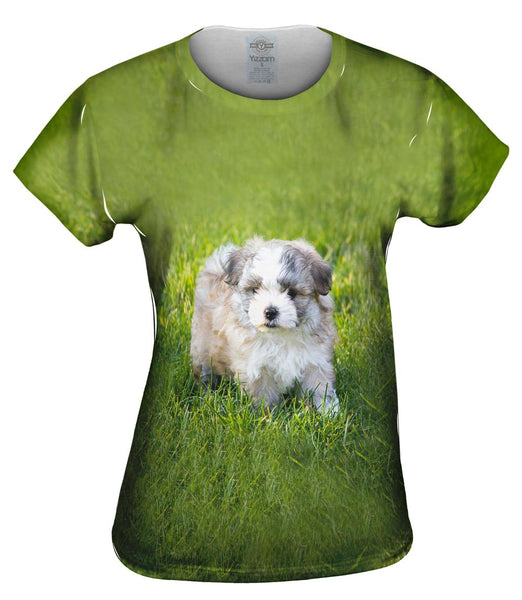Giddy Salt And Pepper Maltese Womens Top