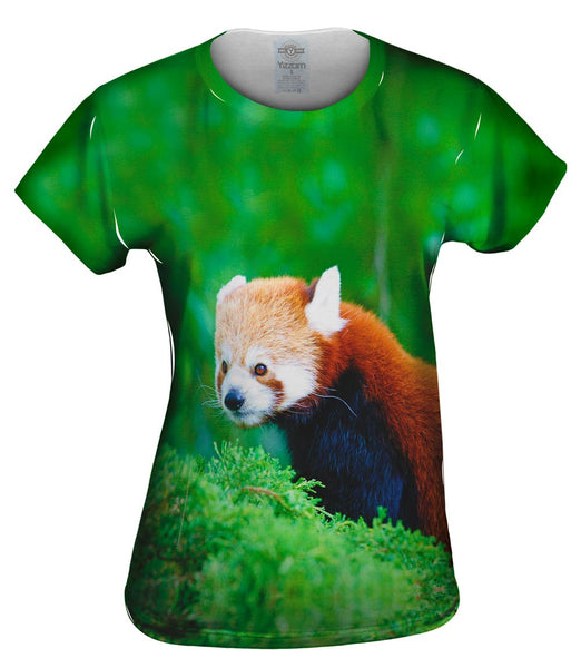Fancy Red Panda Womens Top
