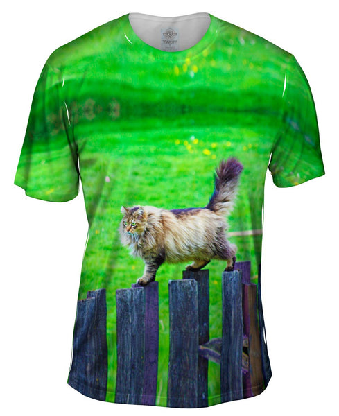Sure Footed Cat Mens T-Shirt
