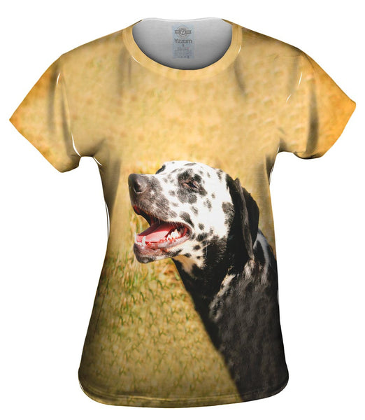 Laughing Dalmation Womens Top