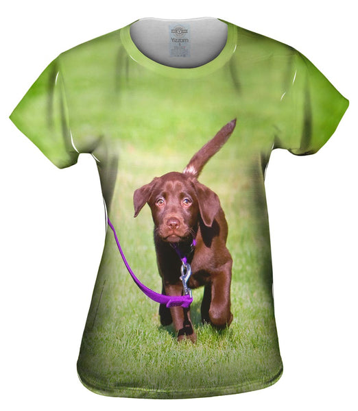 Dog Out For A Walk Womens Top