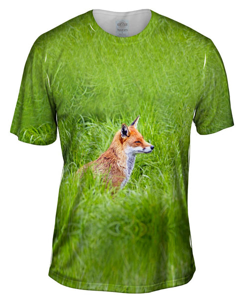 Sly Fox Watching Mens T-Shirt