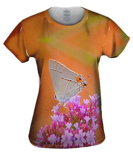 Lovely Gray Butterfly Womens Top
