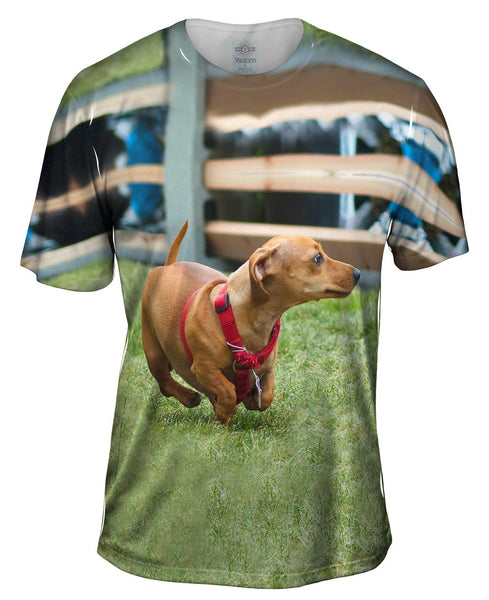 Dachshund Sprint Mens T-Shirt