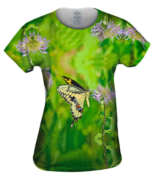 Giant Swallowtail Butterfly Womens Top