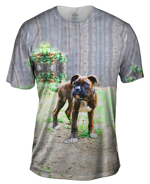 Tiger Striped Boxer Mens T-Shirt