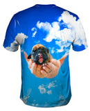Heavens Hands Boxer Puppy