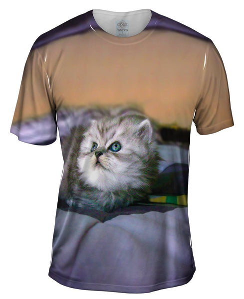 Posing Cat Mens T-Shirt