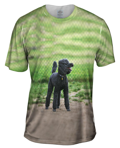 Hurrican Wind Poodle Mens T-Shirt