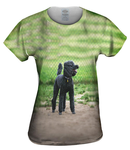 Hurrican Wind Poodle Womens Top