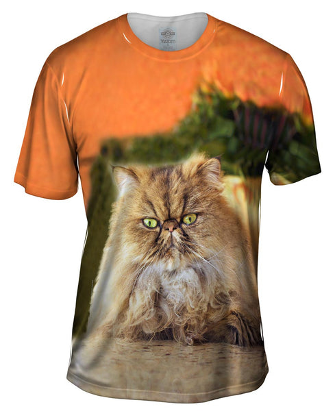 Furball Kitten Mens T-Shirt