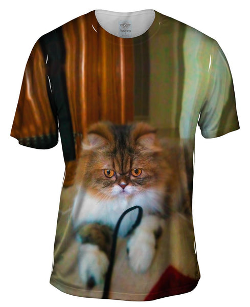 Fall Soft Kitty Cat Mens T-Shirt