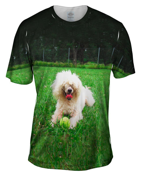 Shaggy Haired Poodle Mens T-Shirt