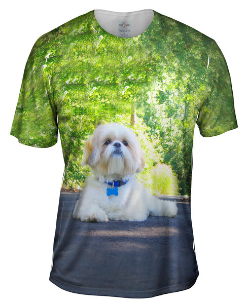 Poodle On Highway Mens T-Shirt