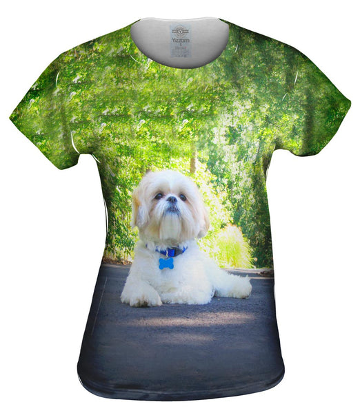 Poodle On Highway Womens Top