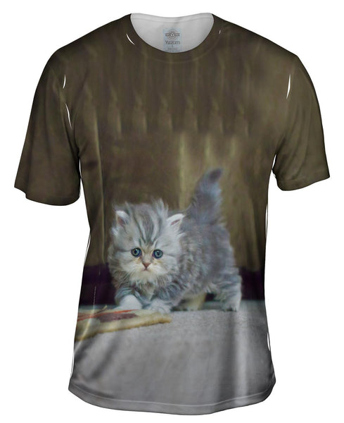 Small And Fuzzy Kitten Mens T-Shirt