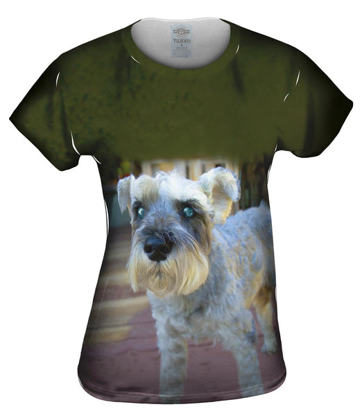 Curious Schnauzer Womens Top
