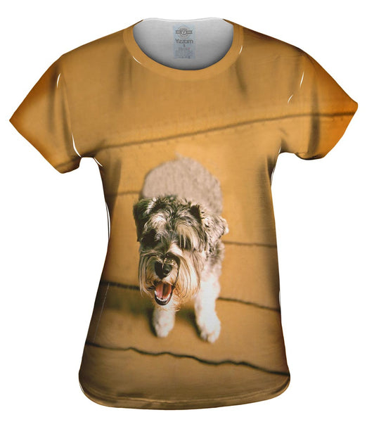 Mini Schnauzer Barking Womens Top