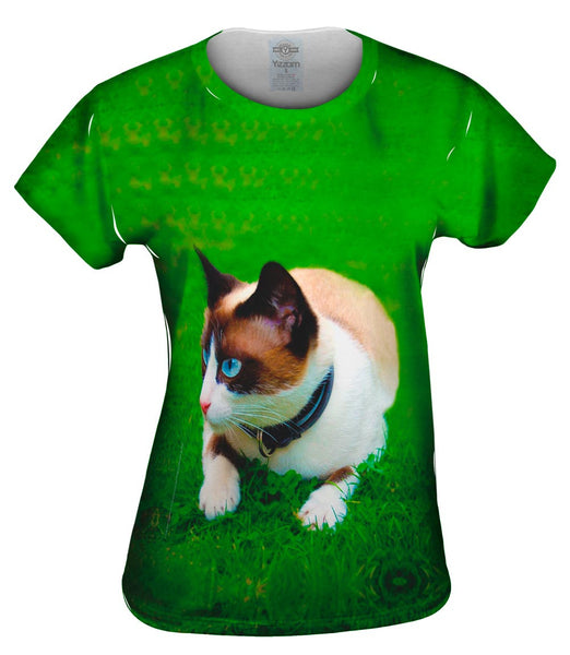 Ready To Pounce House Cat Womens Top