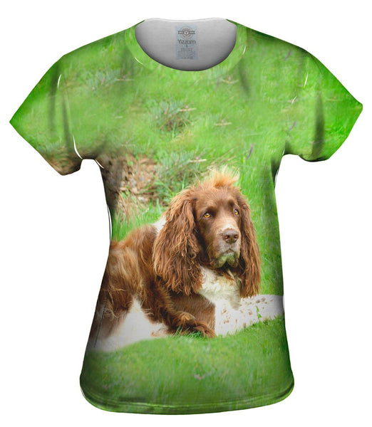 Lazy Cocker Spaniel Womens Top