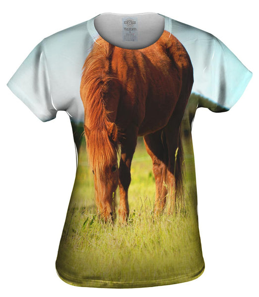 Brown Horse Grazing Womens Top