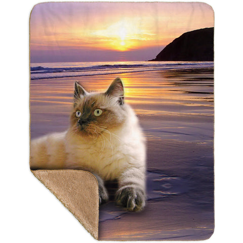 Beach Beauty Kitty Cat